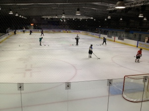Home Ice of Widnes Wild